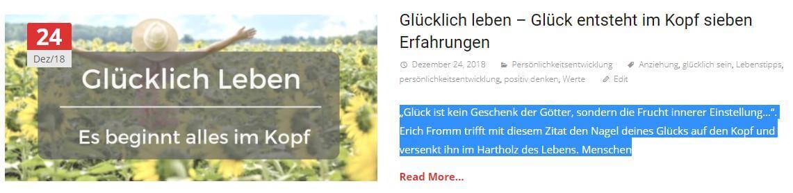 wordpress seite gehackt und kopiert 2
